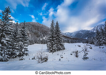 View of snow-covered mountains in winter