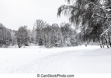 view of snow-covered urban park in winter