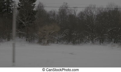 View of snow trees from window moving train