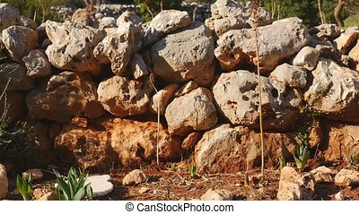 View of stone masonry of ancient house in depths of a forest...