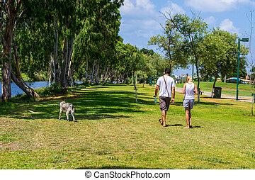 View of summer park Yarkon