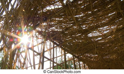 Close-up low-angle still shot of bright and flickering sunlight rays filtering through stalks and grass thatch roof of teak plants nursery, Myanmar.