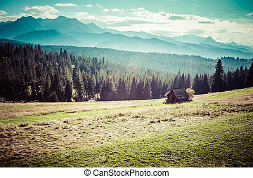 View of Tatra Mountains from hiking trail. Poland. Europe.