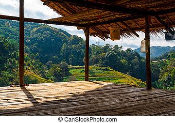 View of Tea plantation in the Doi Ang Khang, Chiang Mai,...