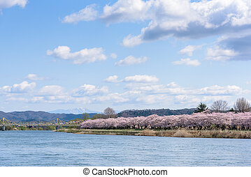 view of Tenshochi Park in Iwate Prefecture, Japan is famous ...