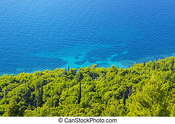 view of the azure sea coast with forest
