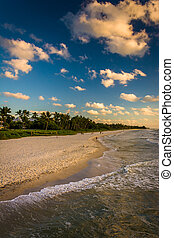 View of the beach from the fishing pier in Naples, Florida.