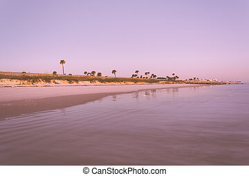 View of the beach in Palm Coast, Florida