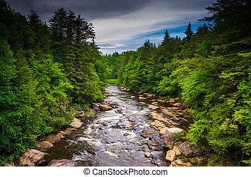 View of the Blackwater River from a bridge at Blackwater...