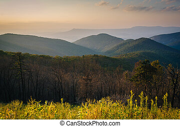 View of the Blue Ridge Mountains at sunset, in Shenandoah National Park, Virginia.