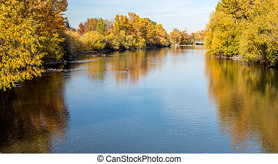 View of the Boise River in fall with yellow trees lining