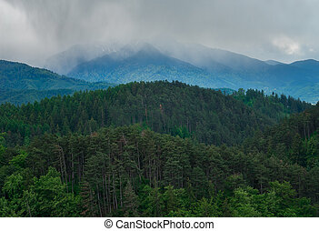 View of the Carpathian from Rasnov