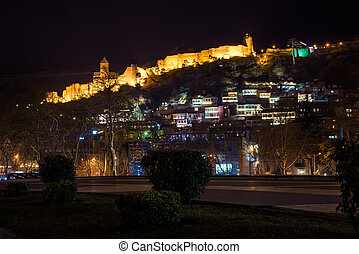 view of the castle in Tbilisi