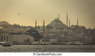 city of Istanbul, view of the Blue Mosque and gulls flying in the distance Slow motion.