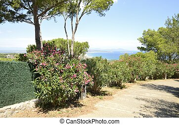 View of the coast from Begur