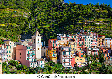 View of the colorful houses along the main street in a sunny day in Riomaggiore.