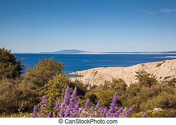 View of the Croatian coast