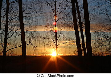 View of the evening sun at sunset and beautiful optical highlights
