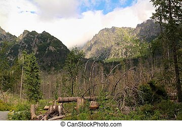 View of the High Tatras in Slovakia
