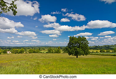 View of the hilly landscape in Cotswolds, Castleton, UK