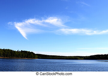 View of the lake and the forest with a beautiful sky on a sunny day