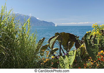 view of the lake Geneva