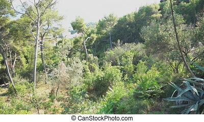 View of the Marjan Park in Split, Croatia.