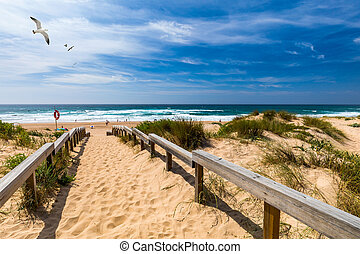View of the Monte Clerigo beach with flying seagulls on the ...