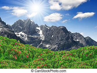 mountain Brenta - view of the mountain Brenta-Dolomites ...