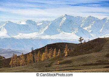 View of the mountain North-Chuya ridge of Altai Republic
