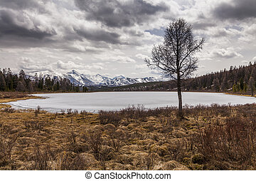 View of the mountains and lake. Altai Mountains.
