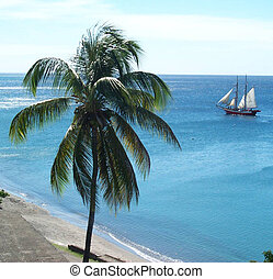 View of the ocean at Martinique