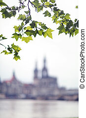 View of the old town of Dresden, Saxony, Germany