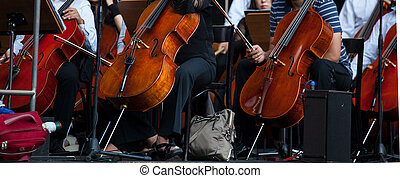 View of the Orchestra in concert - Cello musical instrument