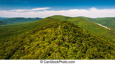 View of the Ridge and Valley Appalachians from Big Schloss, in George Washington National Forest, VA.