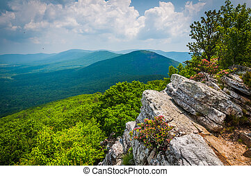 View of the Ridge and Valley Appalachians from Tibbet Knob, in George Washington National Forest, Virginia.