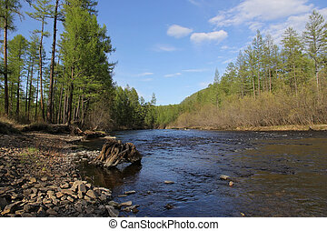 View of the river Berkakit in South Yakutia