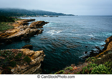 View of the rocky Pacific Coast, at Point Lobos State ...