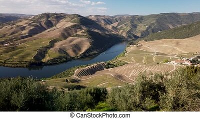View of the terraced vineyards in the Douro Valley and river...