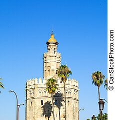View of the Torre del Oro in Seville, Spain