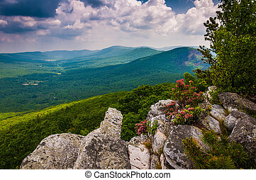 View of the Trout Run Valley from Tibbet Knob, in George...