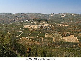 valley near the town of Motovun