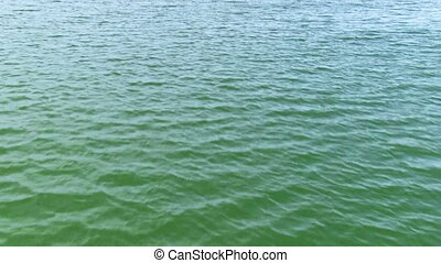 View of the water surface