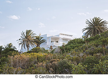 View of the white villa hidden in the greenery, low angle...
