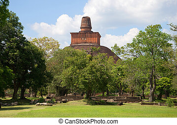View of top of an ancient dagoba of Dzhetavana from the archaeological park of Anuradhapura. Sri Lanka