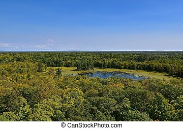 View of treetops from atop of a fire tower - Birdseye view ...
