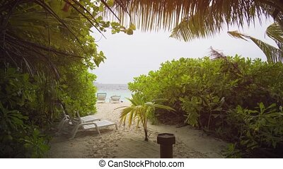 View of Tropical Beach through Vegetation in the Maldives