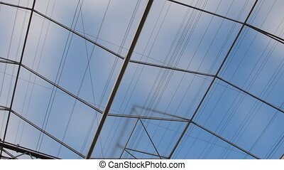 View of upwards through the top of industry green house...