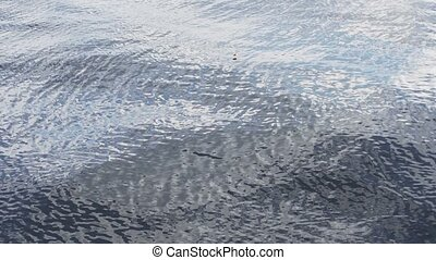 View of water surface of river. Ripple. Blue water. Nature. Coast. Summer.