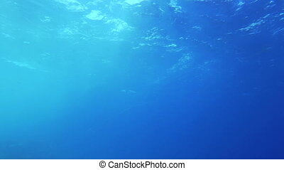 View of wavy water surface from the depth